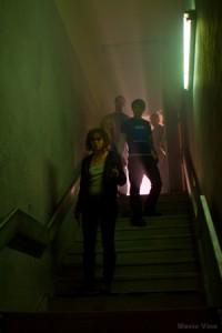Humans on the run.